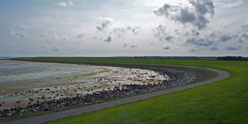 waddenpanorama's